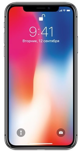 Смартфон Apple iPhone X 64GB Серый космос A1901 (MQAC2RU/A) фото