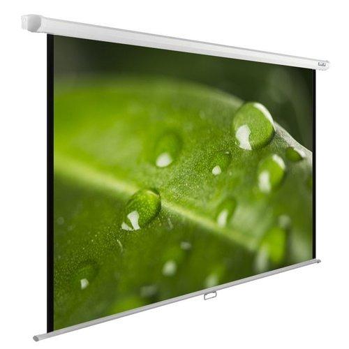 Экран для проектора Cactus WallExpert CS-PSWE-200X150-WT фото